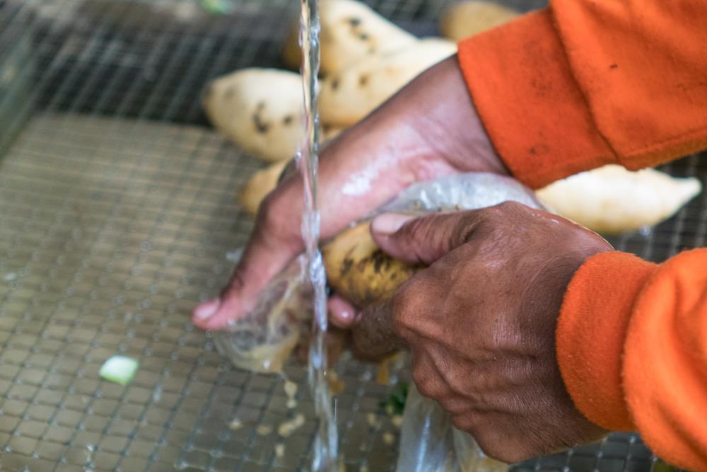Washing the Ubi