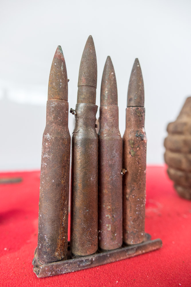 Bullets from the jungle