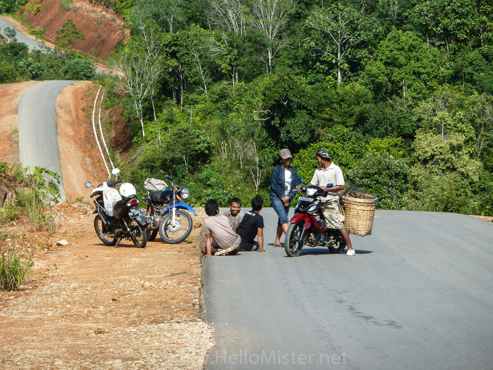 Roller coaster road in Kalimantan - see orangutan and meet dayak people in kalimantan