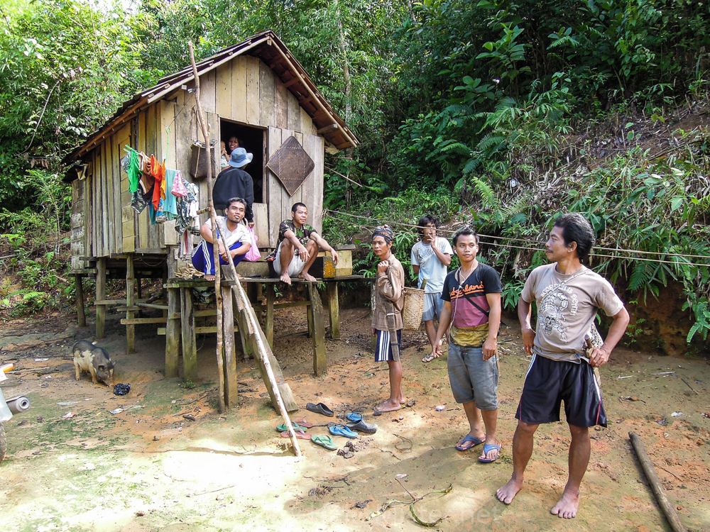 Stilt house in Kalimantan - see orangutan and meet dayak people in kalimantan