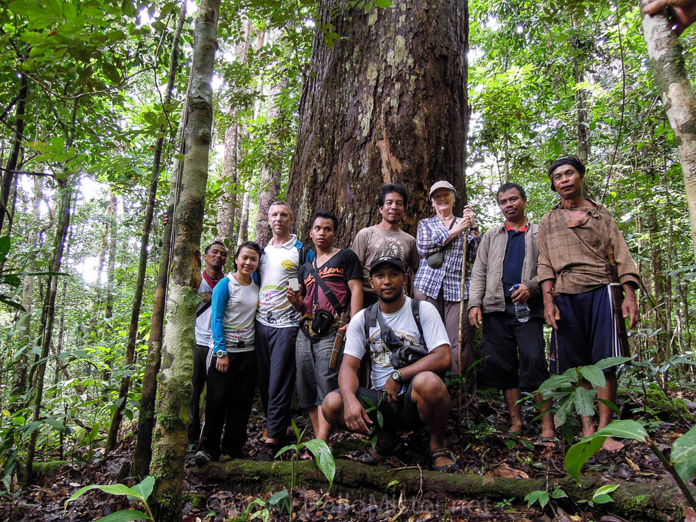 Mas Yomie and trekking party - Kundangan - see orangutan and meet dayak people in kalimantan