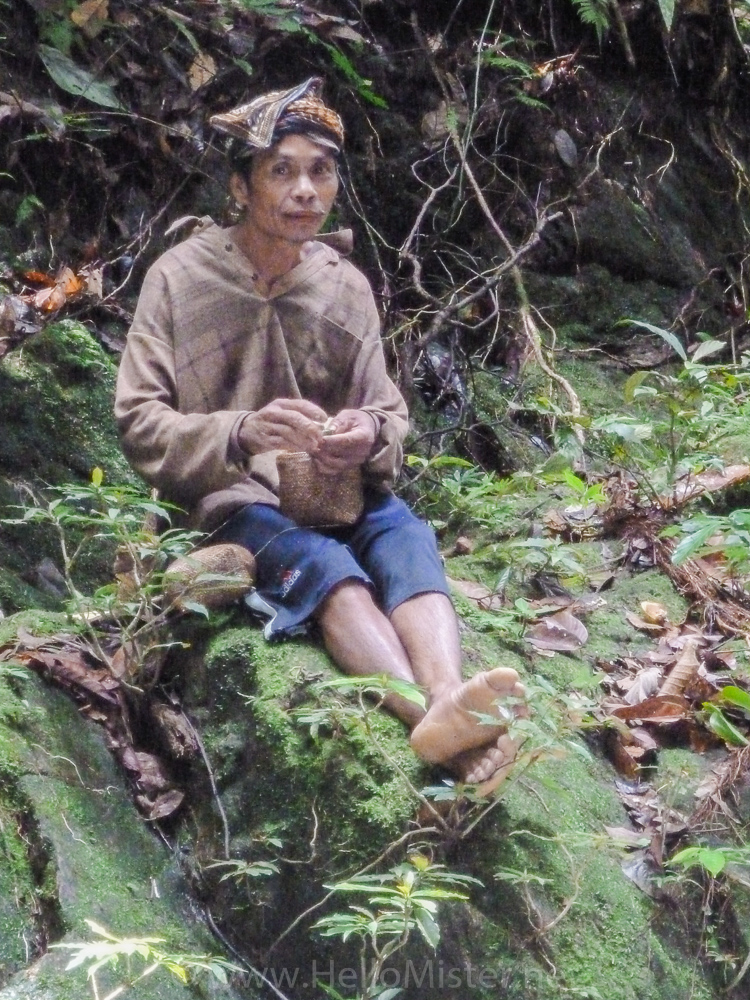 Kudangan Shaman - see orangutan and meet dayak people in kalimantan