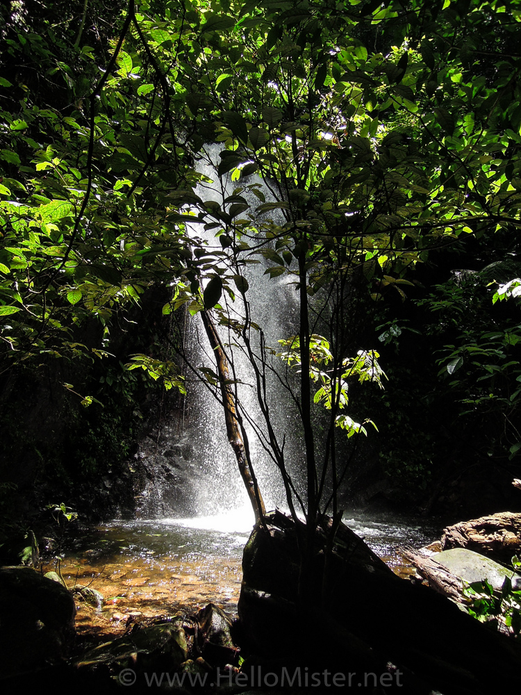 Jungle waterfall - see orangutan and meet dayak people in kalimantan