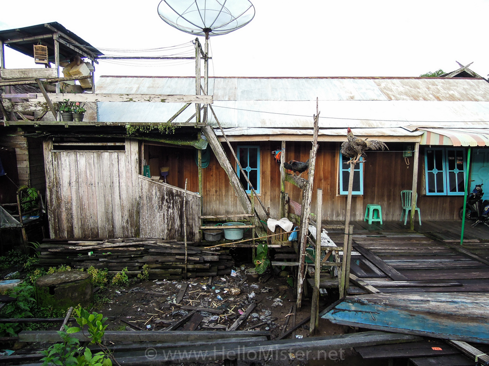 Riverside house in Kumai - see orangutan and meet dayak people in kalimantan