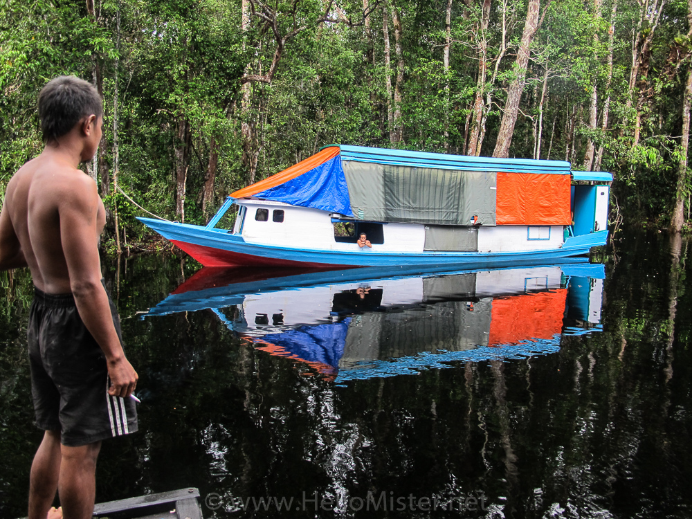 A klotok near Tanjung Puting - see orangutan and meet dayak people in kalimantan
