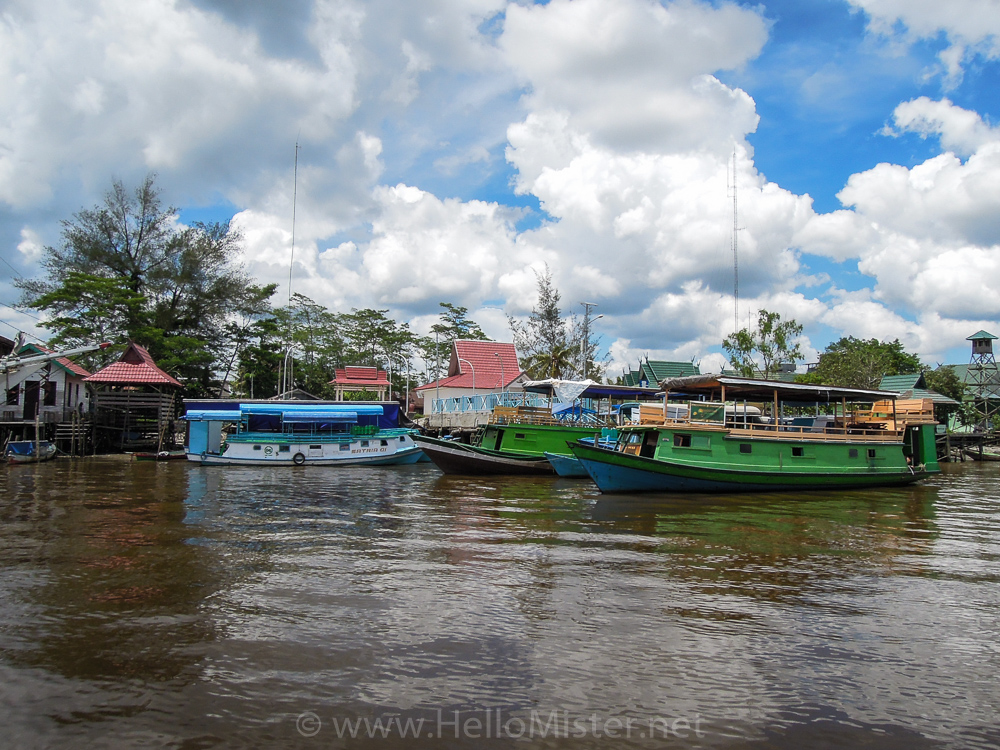 Boats in Kumai - see orangutan and meet dayak people in kalimantan