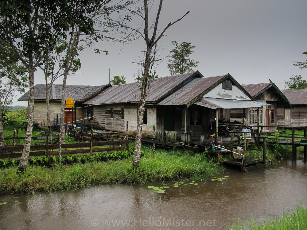 Wooden house in Tanjung Puting - see orangutan and meet dayak people in kalimantan