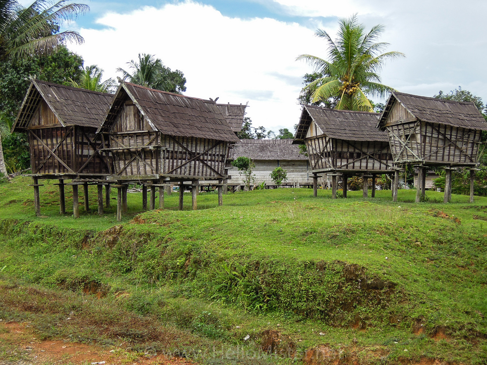 Small Dayak houses in Kalimantan - see orangutan and meet dayak people in kalimantan