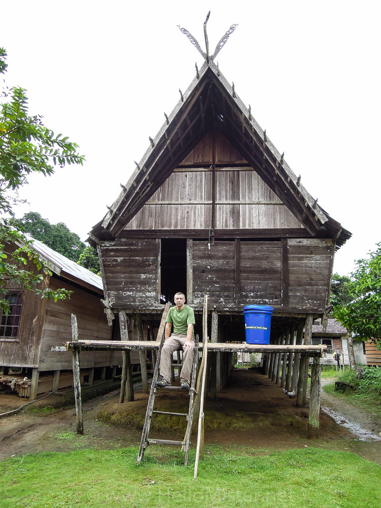The Dayak longhouse - see orangutan and meet dayak people in kalimantan