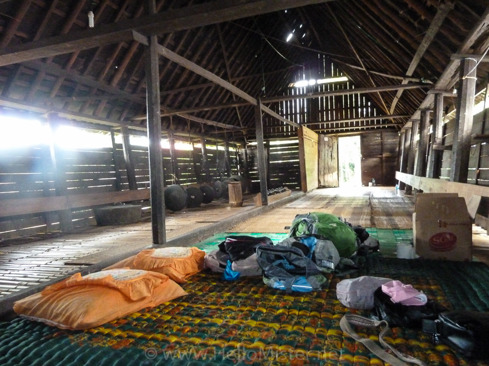Inside the longhouse - see orangutan and meet dayak people in kalimantan