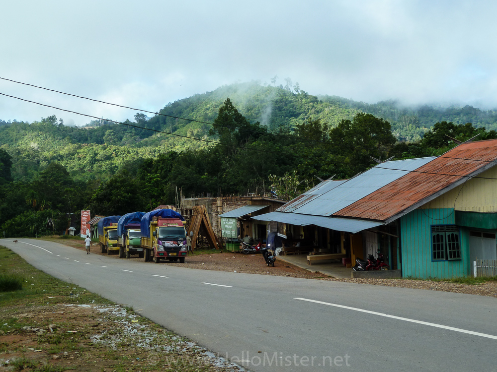 Truck stop near Kudangan - see orangutan and meet dayak people in kalimantan