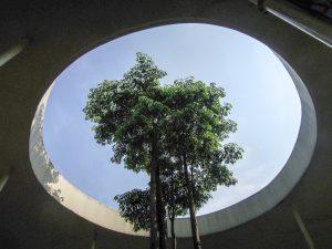 Tree in a ring at Go Wet Waterpark Grand Wisata Bekasi