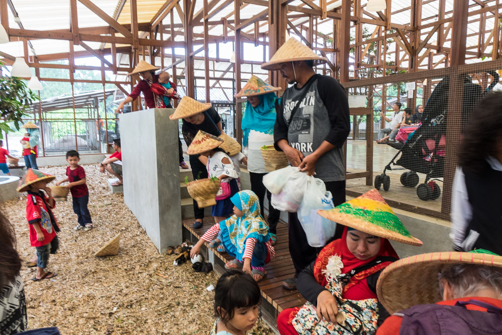 All the family - Day trip to Kuntum Farmfield in Bogor