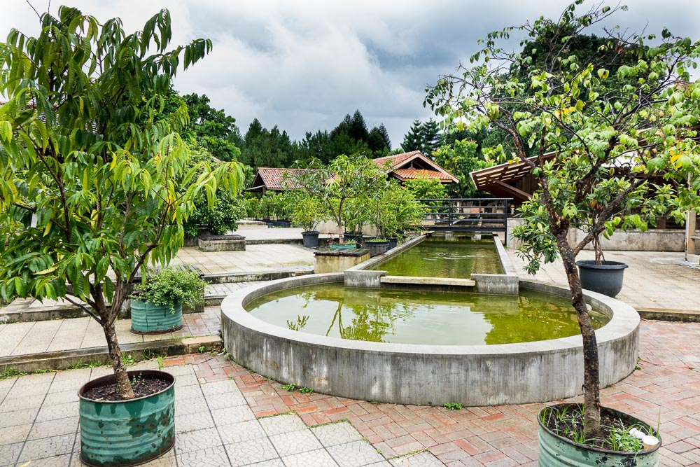The pools and ponds - Day trip to Kuntum Farmfield in Bogor