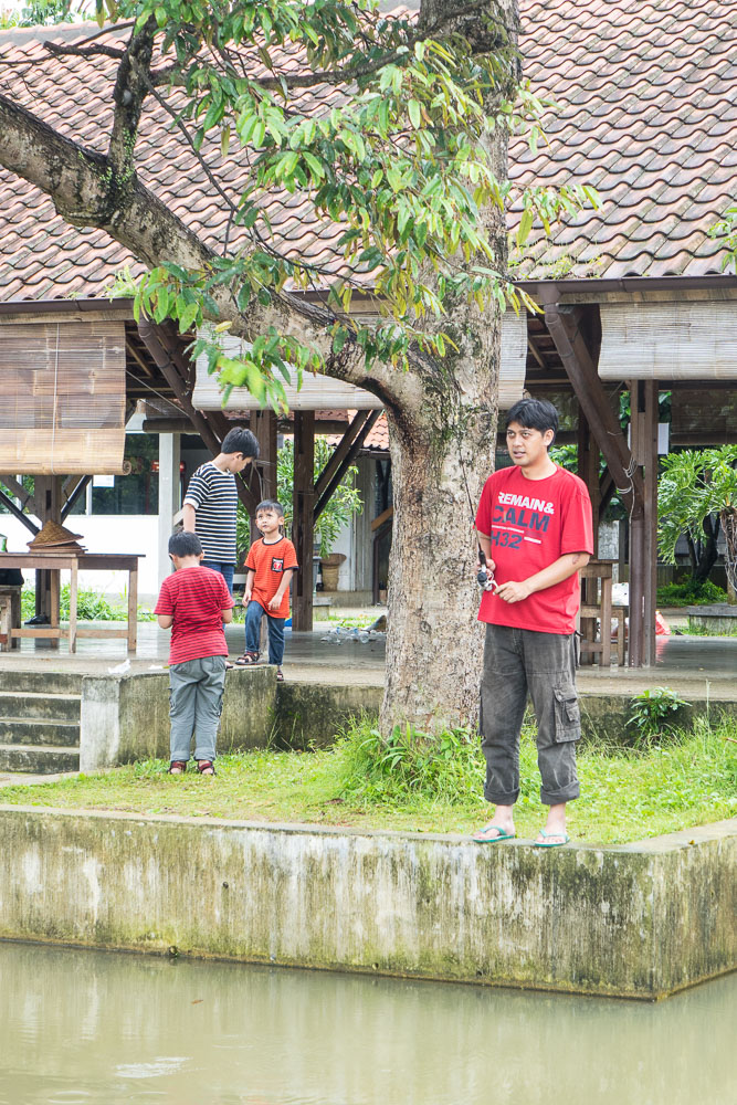 The moment you catch the tree - Day trip to Kuntum Farmfield in Bogor
