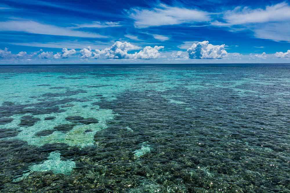 California Reef - Island Hopping and Scuba Diving in Togean