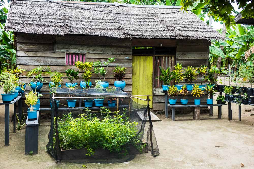 Typical house in Galo-Galo - Morotai Island