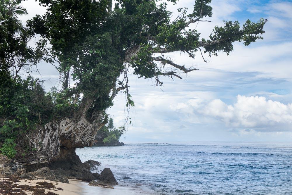 Surf beach - Morotai Island