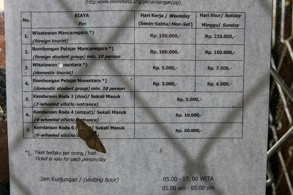 Kelimutu Entrance Prices