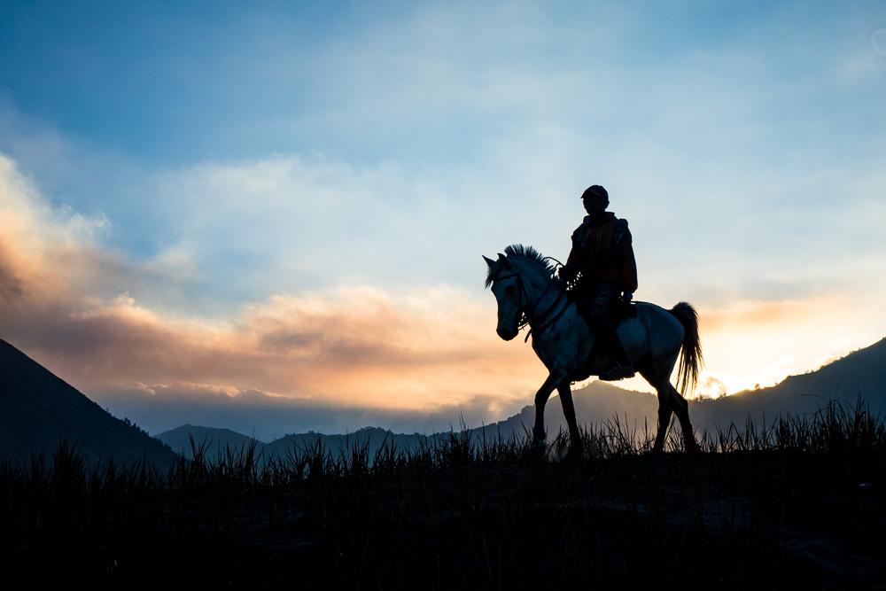 A horse rider in the sunset - Yadnya-Kasada