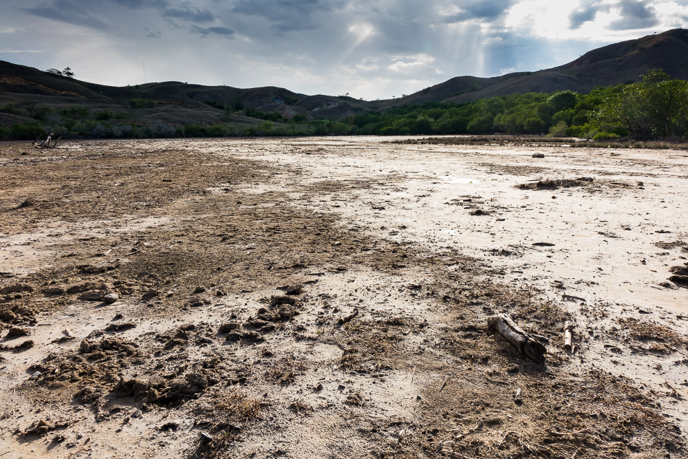 The mud flats where the dragons walk at night - Komodo Island Adventure