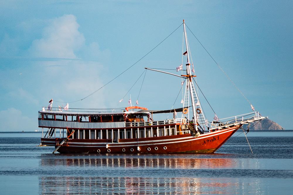 Noah - Komodo Island Adventure